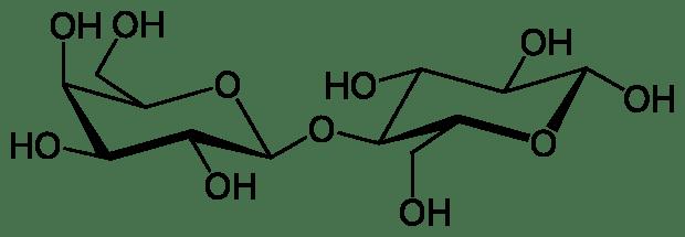 620px-Beta-D-Lactose.svg